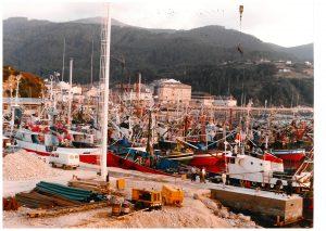 Flota Celeiro (1986)